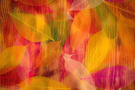 가을 질감 나뭇잎. 추상적 인 배경