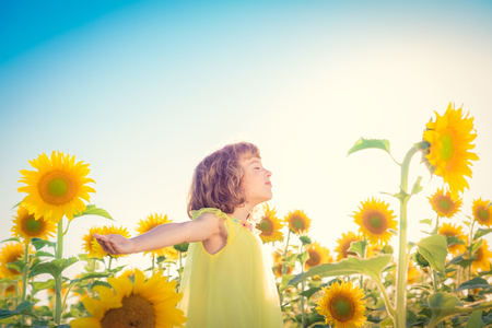 sunflower field: Happy child having fun in spring field against blue sky background. Freedom concept