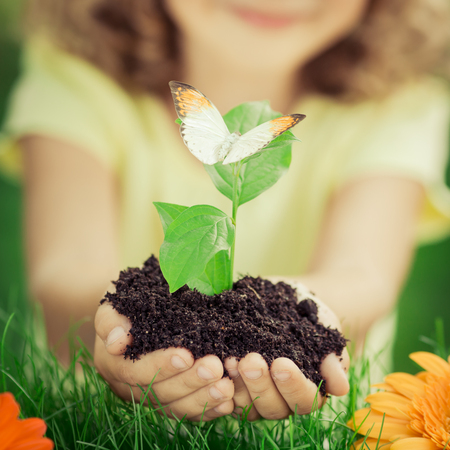 human hands: Child holding young plant in hands against spring green background. Ecology and Earth day concept