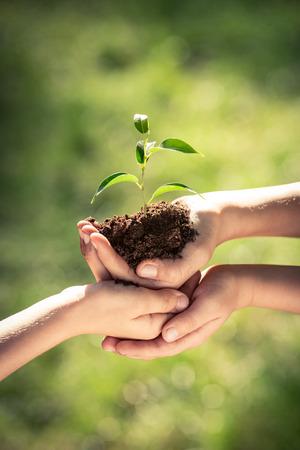Los niños que sostienen la planta joven en manos contra el fondo verde de la primavera. Día de tierra concepto de la ecología vacaciones