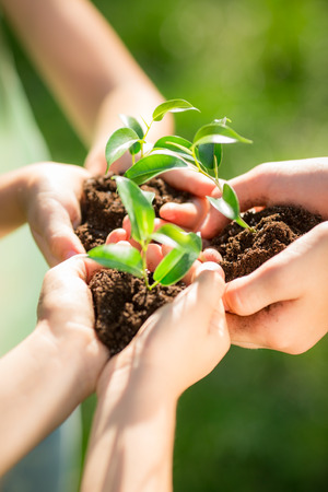 Family holding young plant in hands against green spring background. Earth day ecology holiday concept Stock Photo