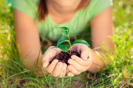 Child holding young plant in hands against spring green background. Ecology and Earth day concept