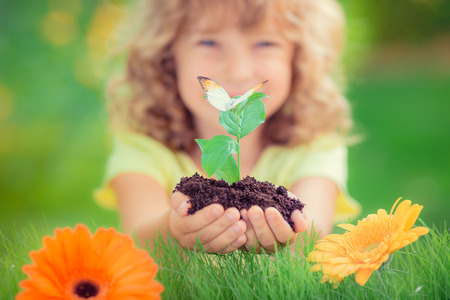 seedling: Child holding young plant in hands against spring green background. Ecology and Earth day concept
