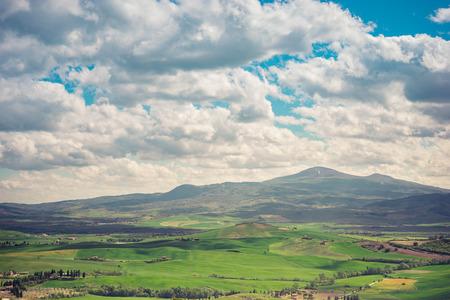 blue green landscape: Green spring field. Blue cloudy sky. Idyllic landscape