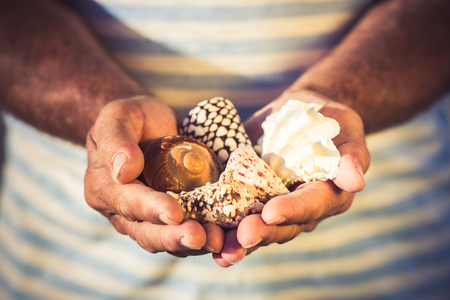 Senior sailor holding seashells in hands against sea background. Summer vacation and travel concept photo