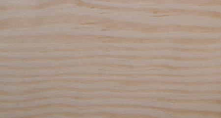 wood surface: the surface of natural wood