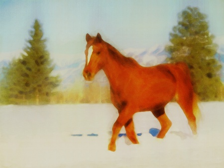 horse drawn: Original watercolor painting of a horse in winter Stock Photo