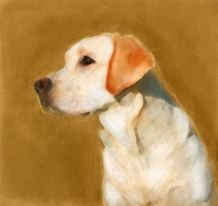 fabric painting: oil painting portrait of young yellow labrador in autumn
