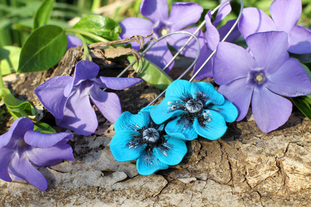 frippery: Handmade blue clay flower earrings with wood violet in spring on the nature background Stock Photo
