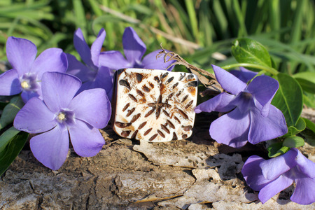 frippery: Handmade bone ethno ring with wood violet in spring on the nature background