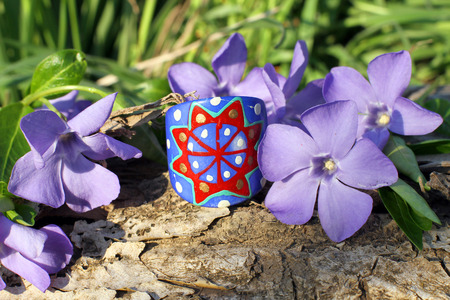 frippery: Handmade blue wooden ring with wood violet in spring on the nature background