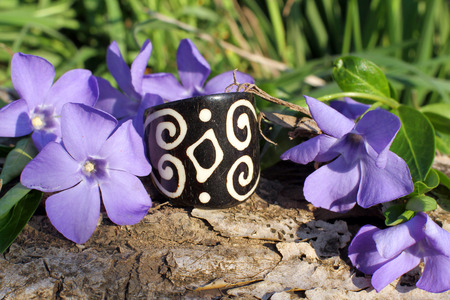 frippery: Handmade bone black ring with wood violet in spring on the nature background