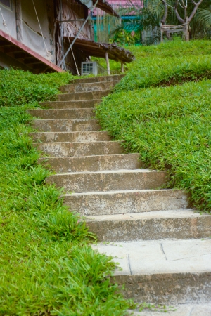 concrete steps across a hill of grass  photo