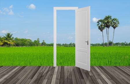 Landscape behind the opening door,3D photo