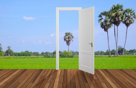 Landscape behind the opening door,3D photo