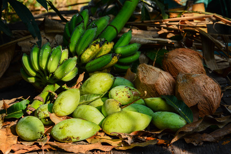 long handled: green mangoes with bananas and coconuts dry leafs