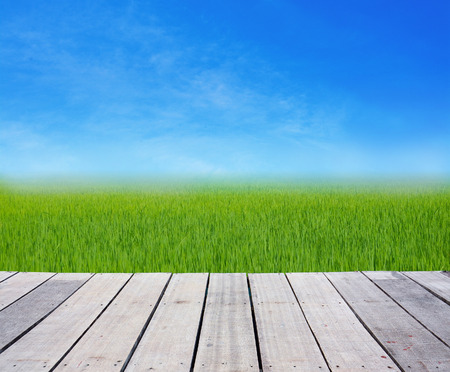 wood terrace with rice field green grass on blue sky  photo