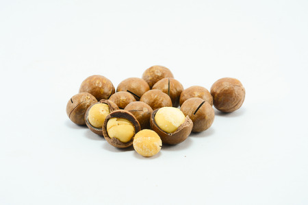 Shelled and unshelled macadamia nuts on white background photo