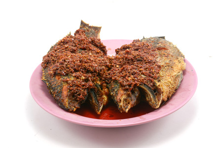 Fried chilli paste sauce with fish on white background photo