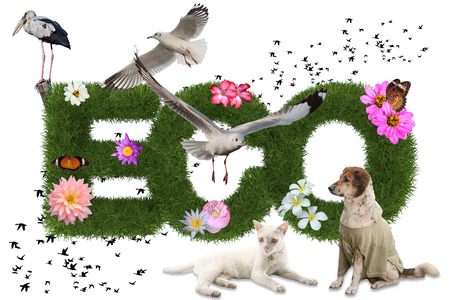 Eco 3d word with animal on white background photo