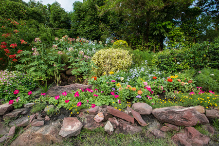 colorful  Flowerbed in the garden photo
