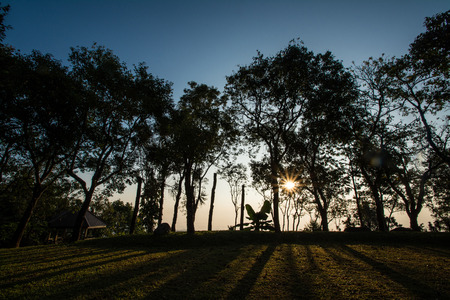 sillouette sunset with tree at Doi  Tung, Chiang Rai photo