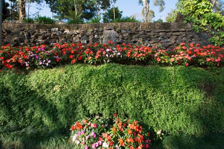garish: Garden of Doi Tung Royal Villa, Chiang Rai, Thailand