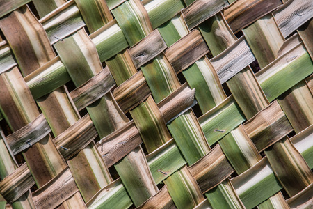 coconut leaves weave pattern photo