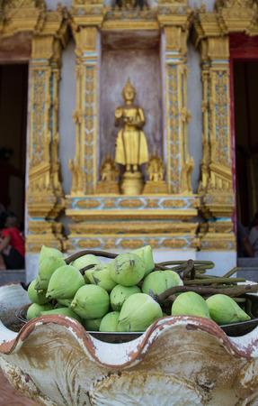 venerate: Bud green lotus with buddha statue background flower of buddhist Stock Photo