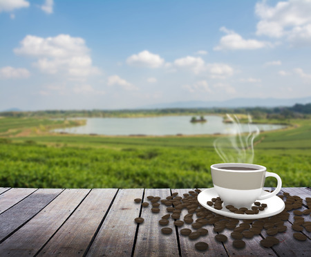 green fields: Cup with tea on table over green tea field