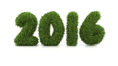 year 3d: 2015 Merry Christmas and Happy New Year ,3d grass Stock Photo