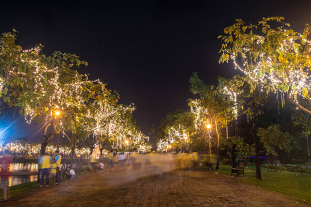 largest tree: decoration lighting on tree in Suan Luang Rama 9 Park and Botanical Garden is the largest in Bangkok at night