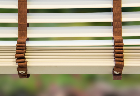 window blinds: Window blinds on nature background