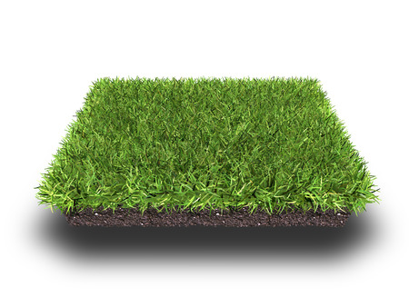 dwarsdoorsnede van grond met gras geïsoleerd op wit, 3D-rendering