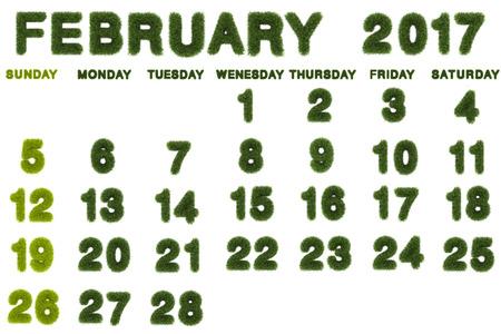Calendar for February 2017 on white background,3d rendering green grass