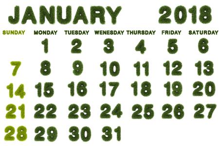 Calendar for January 2018 on white background,3d rendering green grass