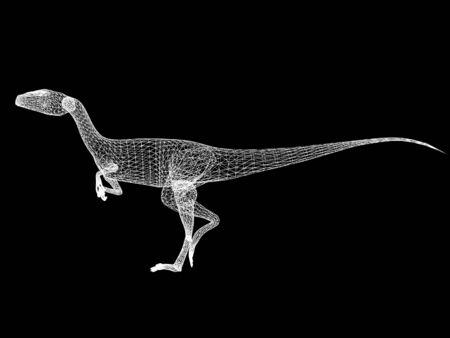 raptor  dinosaurs, 3d rendering wire frame
