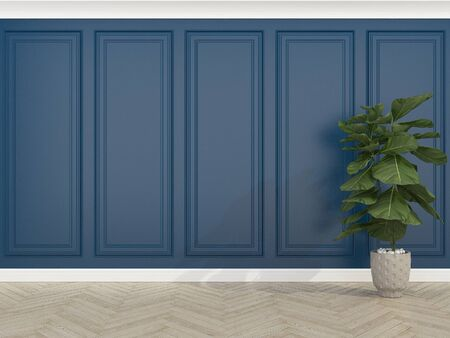 classic blue wall with wood floor and  Fiddle Fig, 3d render