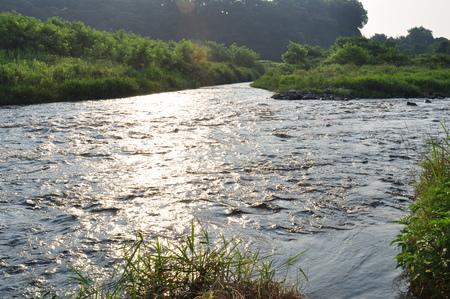 shine: Shine River