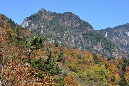 Nishizawa ravine of the foliage from the crest mountain