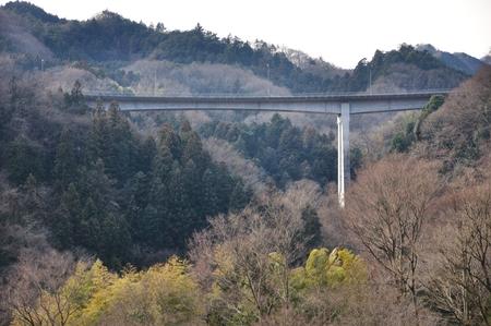 kanagawa: Kanagawa bridge 100 blue field bridge