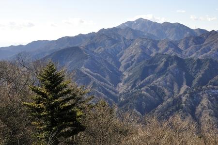 kanagawa: Hope born Mt. Daisen