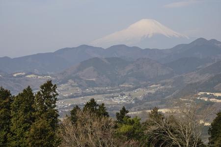 no pass: Primavera Mt. Fuji Foto de archivo