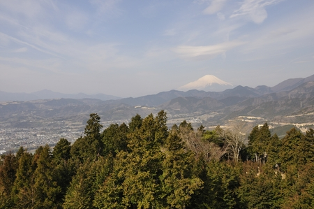 no pase: Primavera Mt. Fuji Foto de archivo