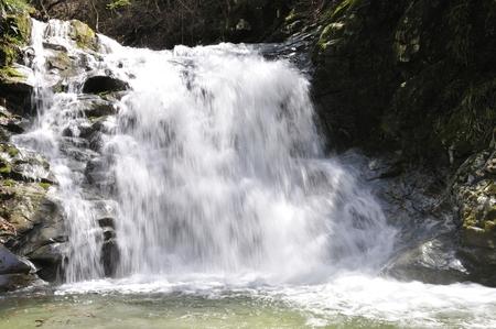 tributary: the waterfall