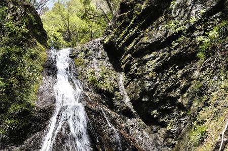 tributary: Doshi village waterfall