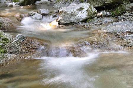 川の西丹沢の本棚 写真素材