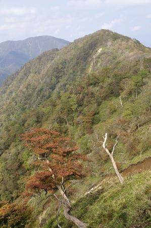 Tanzawa mountains