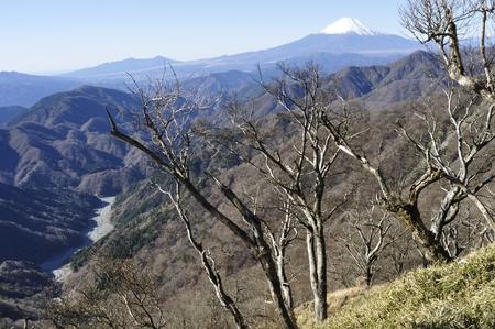 Mount Fuji from Mt. tanzawa tanzawa, Japan Stock Photo