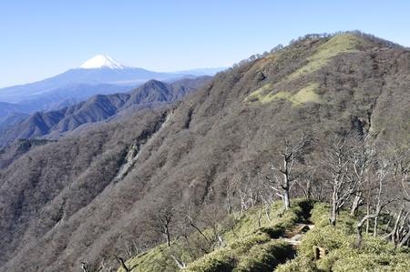 Mt. Fuji from the tanzawa tanzawa mountains and real estate-peaks Stock Photo